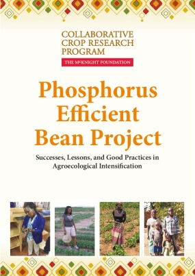 The Phosphorus Efficient Bean Project: Successes, Lessons, and Good Practices in Agroecological Intensification